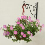 Wrought-Iron-Wall-mounted-Hook-Balcony-Plant-Flower-Pots-Decorative-Shelf-Hanging-Basket-Support-Garden-Art-Crafts