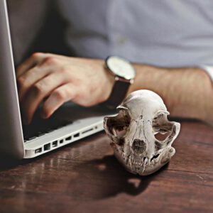 Animal Skull Desk Decoration Statues Sculptures Resin Halloween Decor Decorative Craft Skull Office Bar Skull Model Artificial