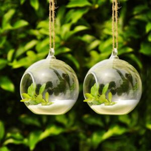 Hanging Glass Flowers Plant Vase Stand Terrarium Container Diameter 8cm DIY Glass Flower Pot Planter Bonsai Wedding Decors